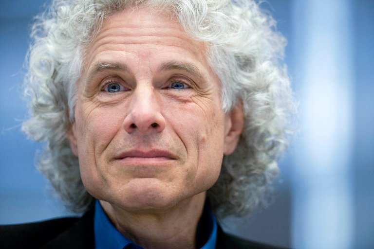Steven Pinker has broadened the base of his data to justify the optimist in him on all social fronts, though one would think that his hairdresser might curb the impulse to advantage